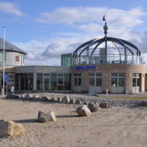 Strandkrappe Hohenfelde